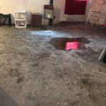 Mold On The Floor